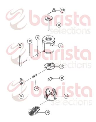 Εικόνα της Coffee Queen Mega Gold M Serving Station Spare Parts  Brush (See Image Item 33)