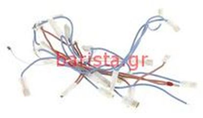 Picture of Ascaso Arc - Basic Thermoblock Group +11/2008 Arc Wiring