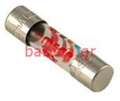 Picture of Rancilio S-20 Electronic Components 0.6a Fuse