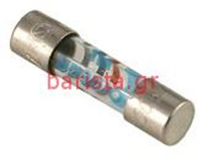Picture of Rancilio S-20 Electronic Components 0.8a Fuse