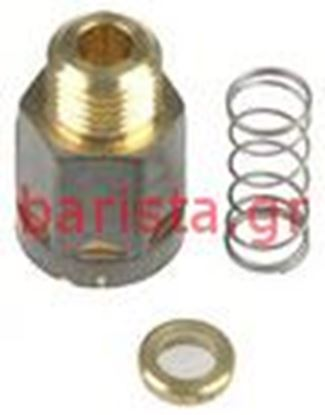 Picture of Rancilio Z-9/z-11/s-20 Retention / Expansion Valves Complet Injector