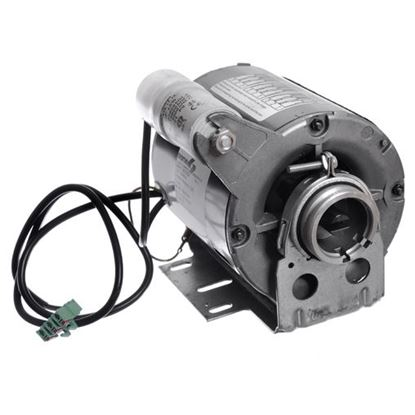 Picture of Wega 130w 230v Pump Motor