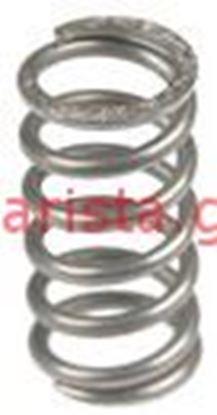 Εικόνα της Rancilio Classe 6 E/s Boiler/resistance/valves Spring