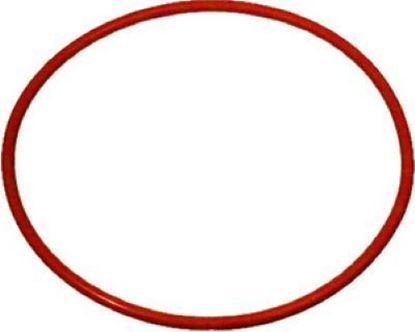 Εικόνα της O-RING 71,12X2,62 SH70 FOR BOILER FOR ART.040/041