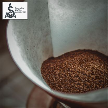 Picture of Masterclass & Σεμινάριo SCA Brewing Foundation 30/09/2020