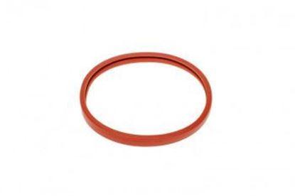 Gran Gaggia Pressurized filterholder conveyor seal